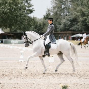Lagoalva: Cavalos - 354 - Beduíno