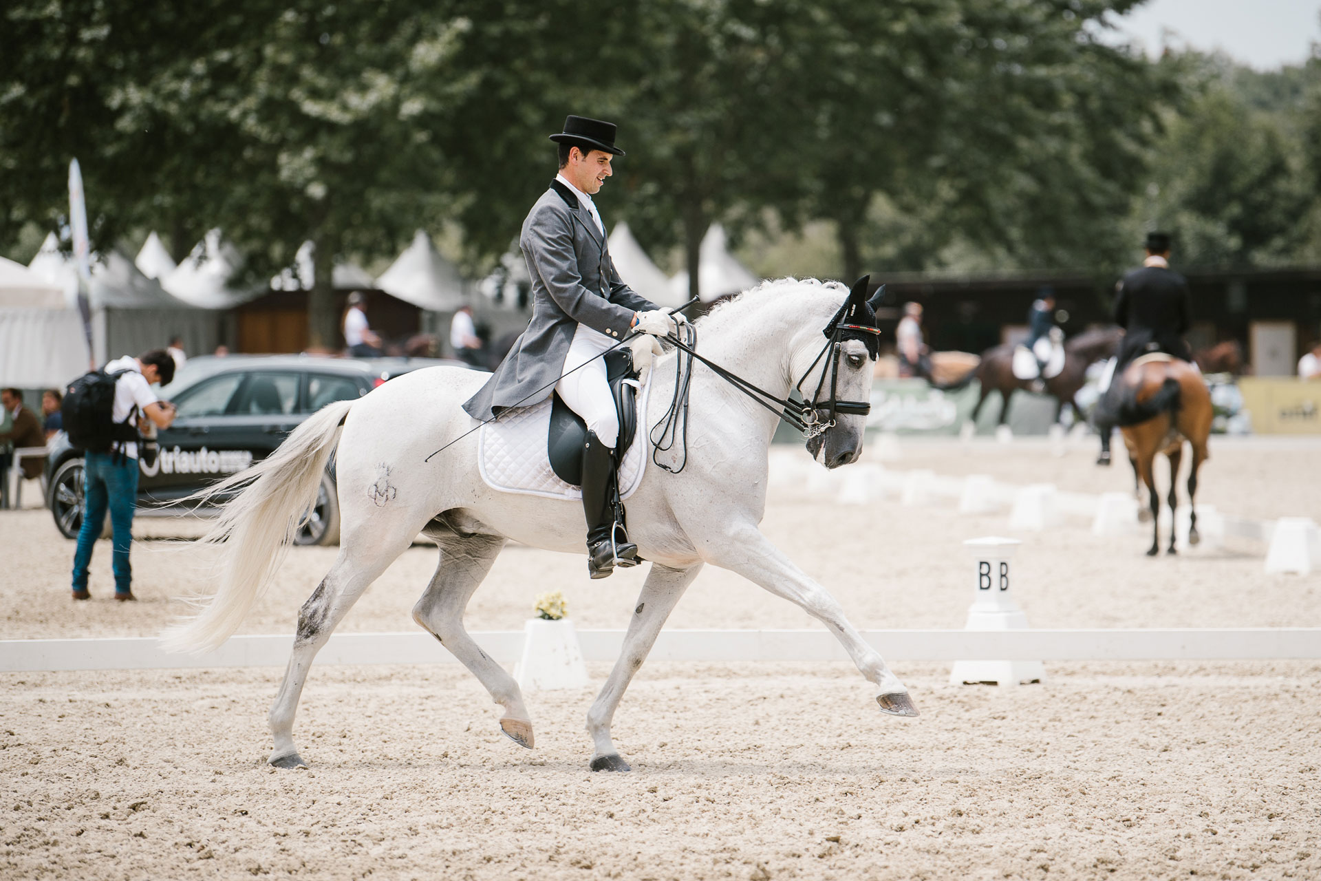 Piro free gelding competing in GP