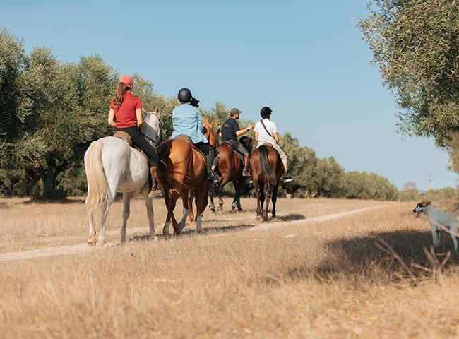 Lagoalva: Turismo - cavalos